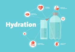 Hydration Tips for Truck Drivers Image